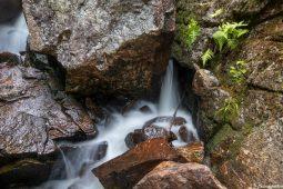 The White Mountain Streams